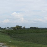 Acres of Land 3
